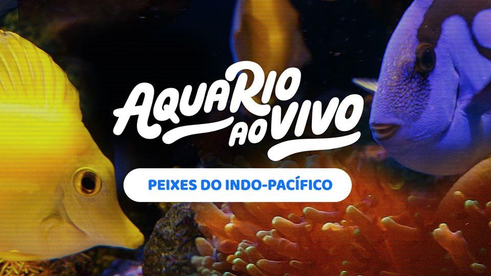 Live do AquaRIO